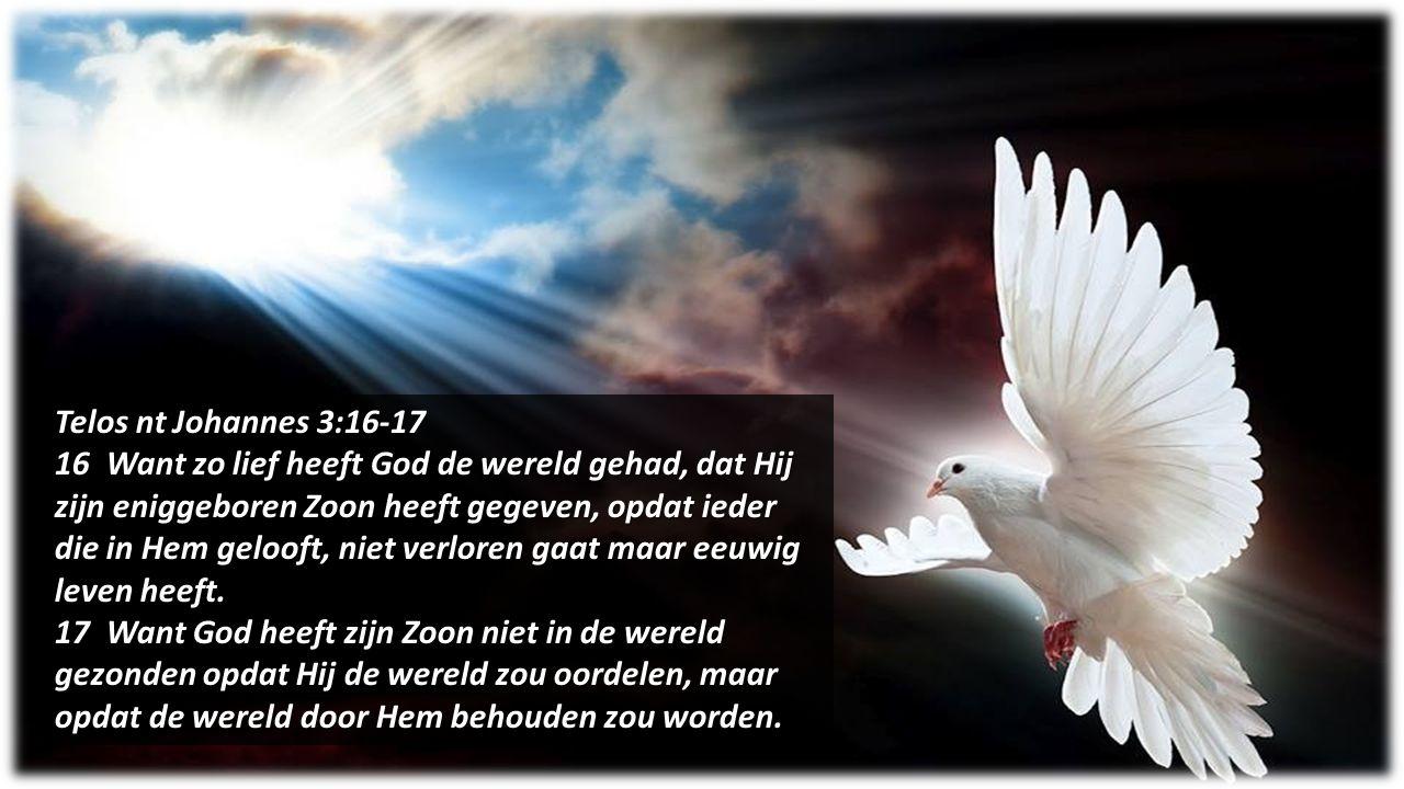 Telos nt Johannes 3:16-17