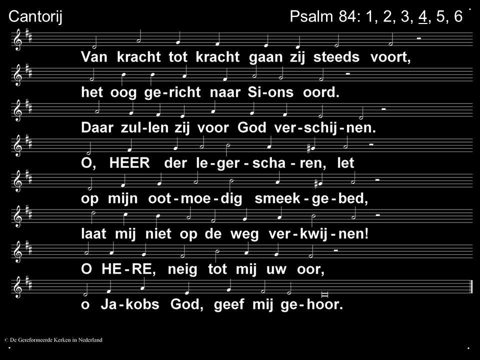 . Cantorij Psalm 84: 1, 2, 3, 4, 5, 6 . .