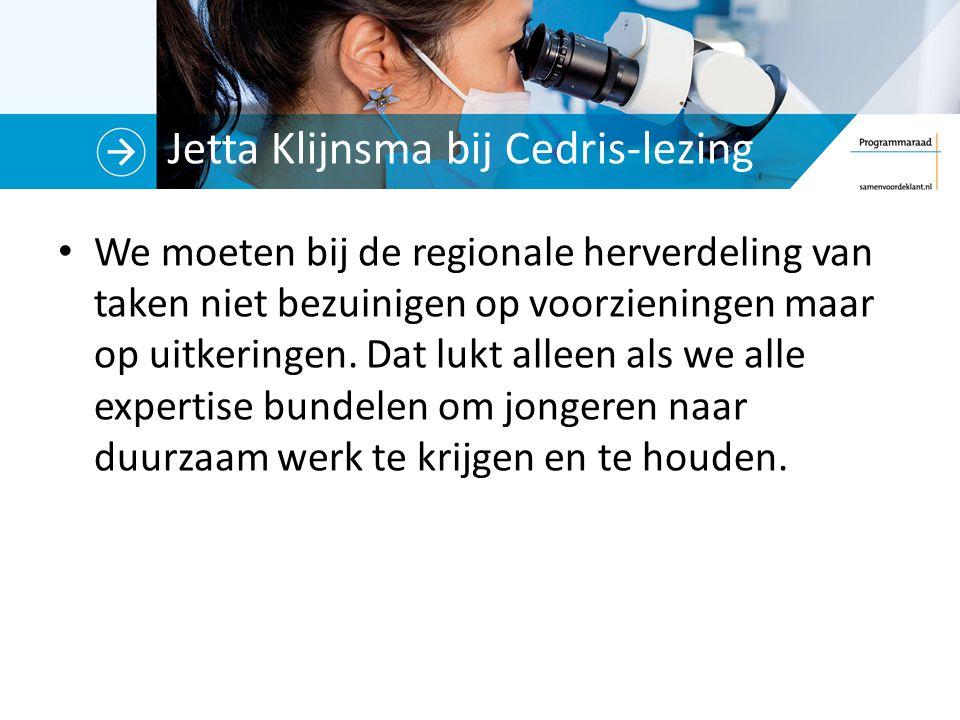 Jetta Klijnsma bij Cedris-lezing