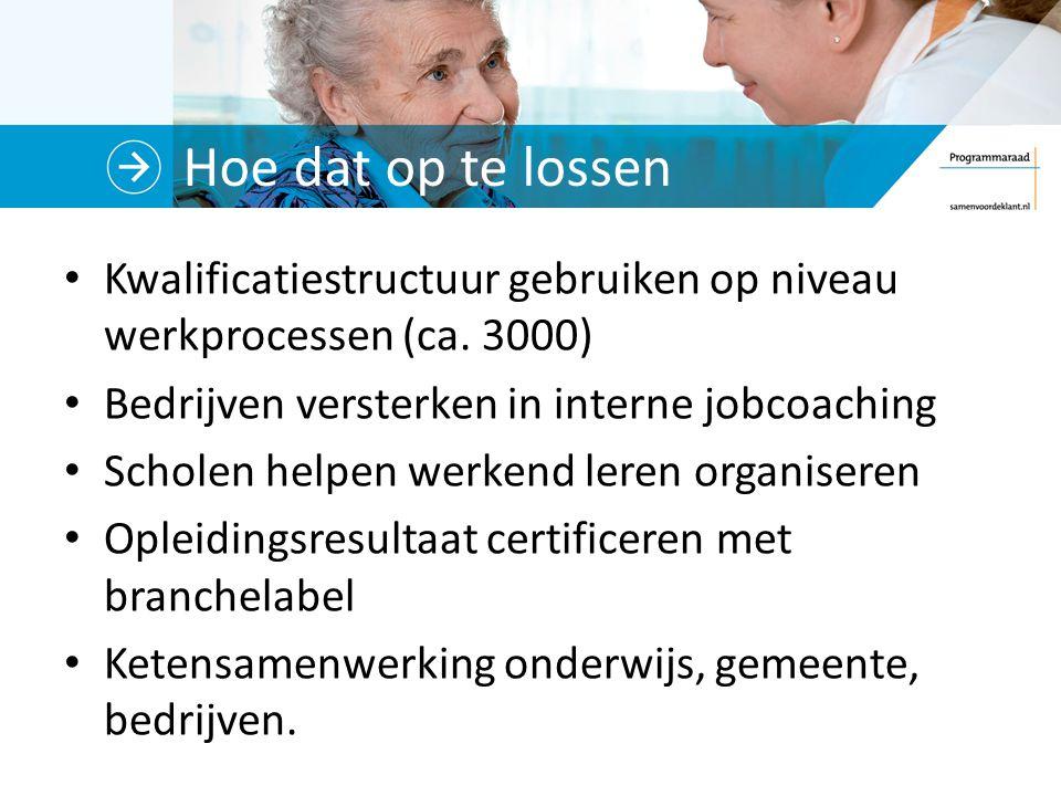 Hoe dat op te lossen Kwalificatiestructuur gebruiken op niveau werkprocessen (ca. 3000) Bedrijven versterken in interne jobcoaching.