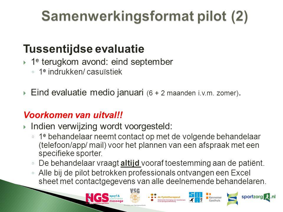 Samenwerkingsformat pilot (2)