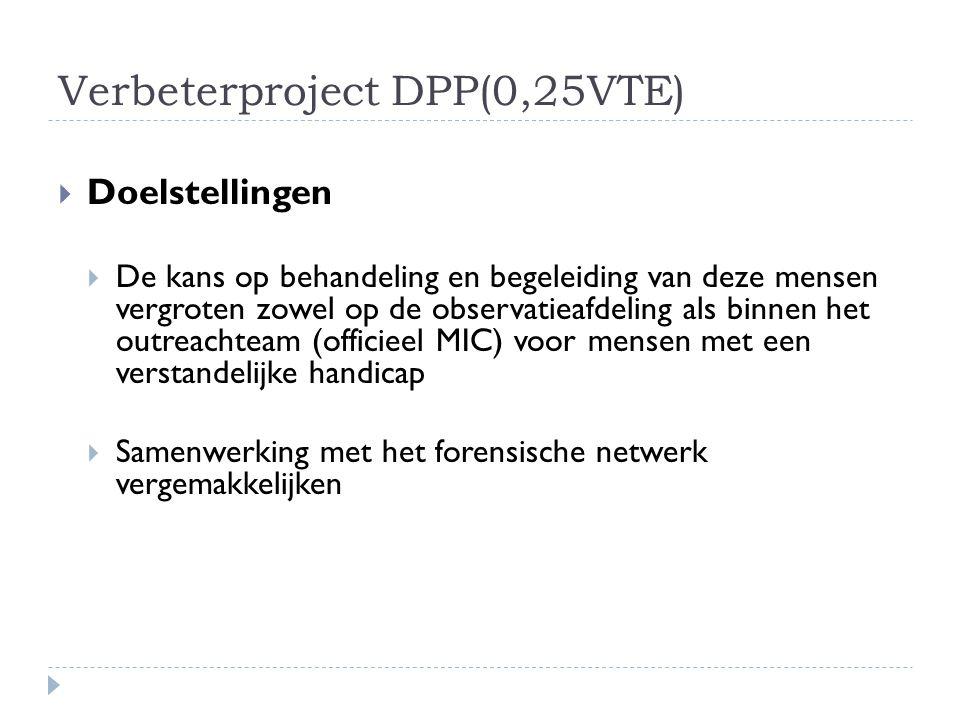 Verbeterproject DPP(0,25VTE)