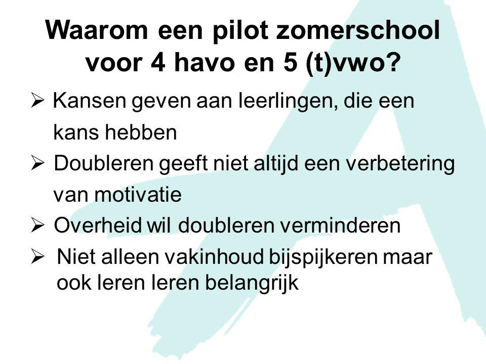 Waarom een pilot zomerschool voor 4 havo en 5 (t)vwo