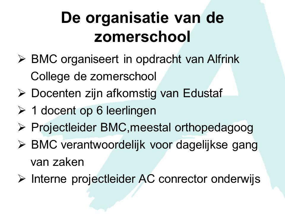 De organisatie van de zomerschool
