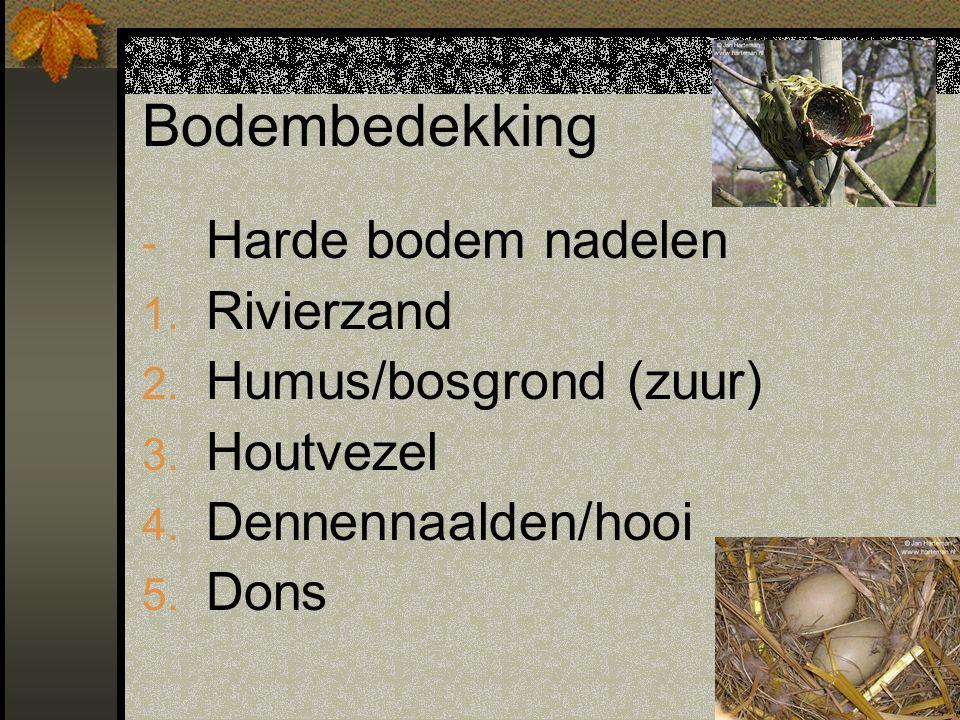 Bodembedekking Harde bodem nadelen Rivierzand Humus/bosgrond (zuur)