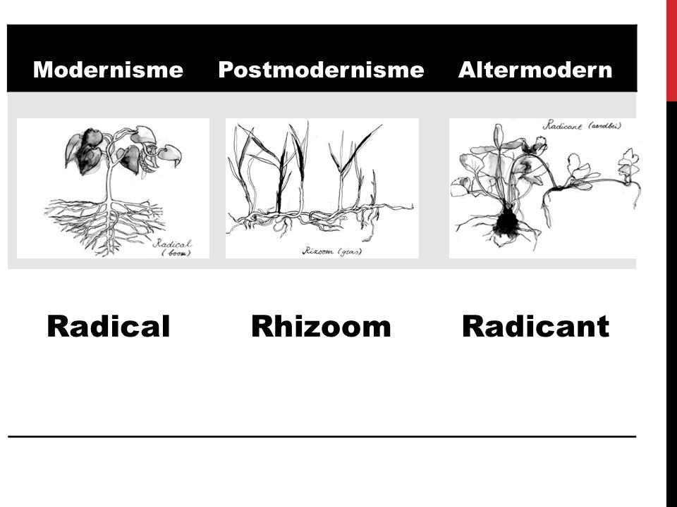 Radical Rhizoom Radicant