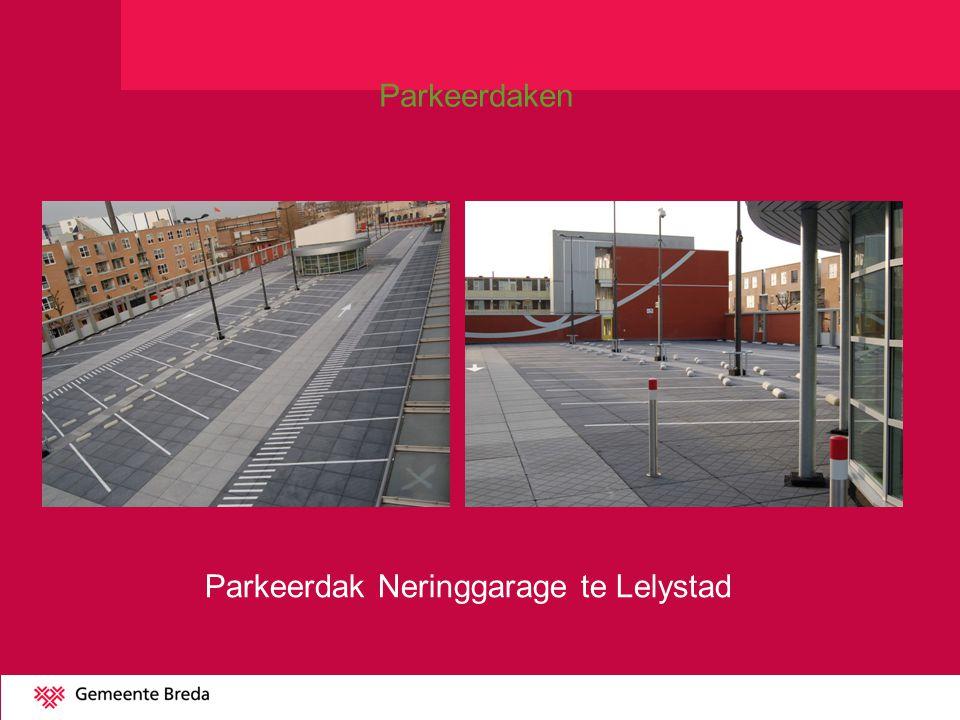Parkeerdak Neringgarage te Lelystad