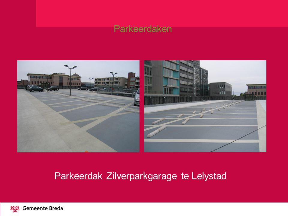 Parkeerdak Zilverparkgarage te Lelystad