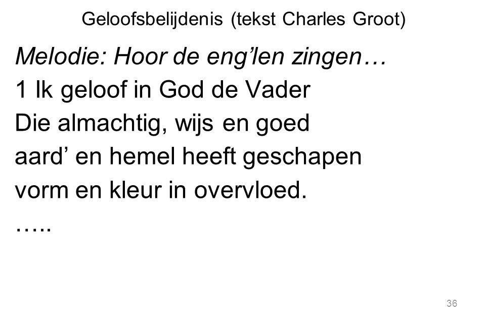 Geloofsbelijdenis (tekst Charles Groot)