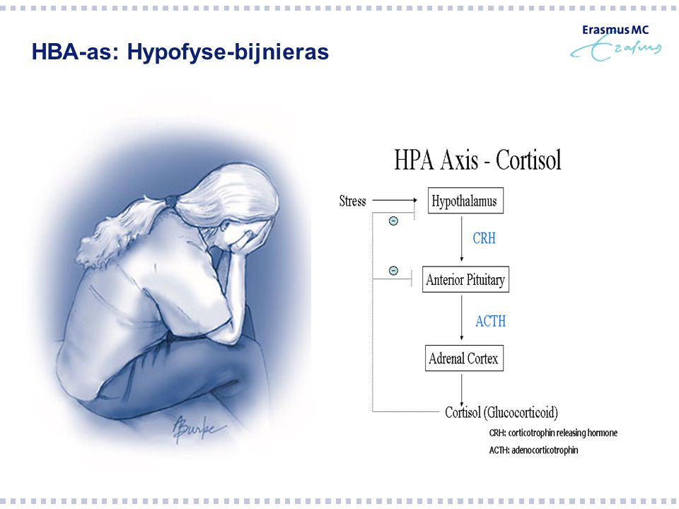 HBA-as: Hypofyse-bijnieras