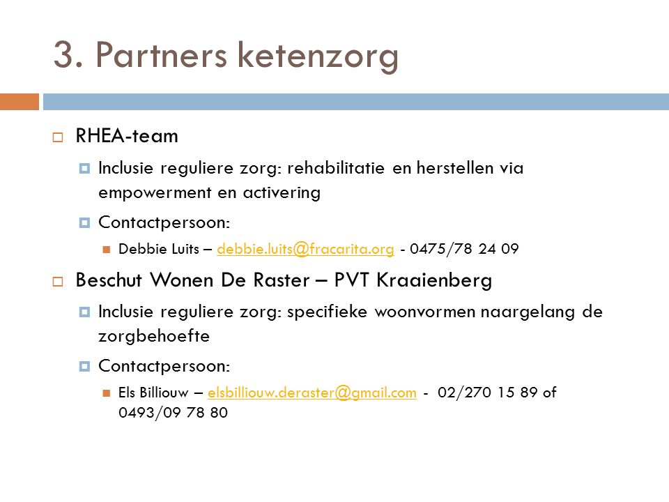 3. Partners ketenzorg RHEA-team