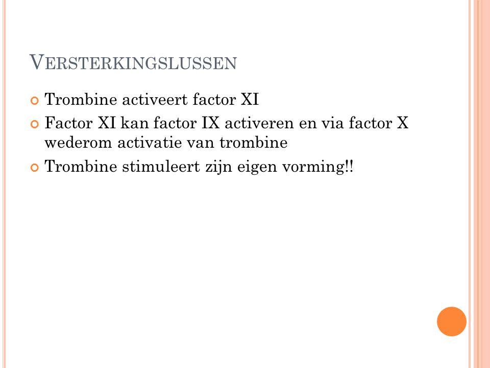 Versterkingslussen Trombine activeert factor XI
