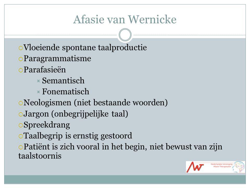 Afasie van Wernicke Vloeiende spontane taalproductie Paragrammatisme