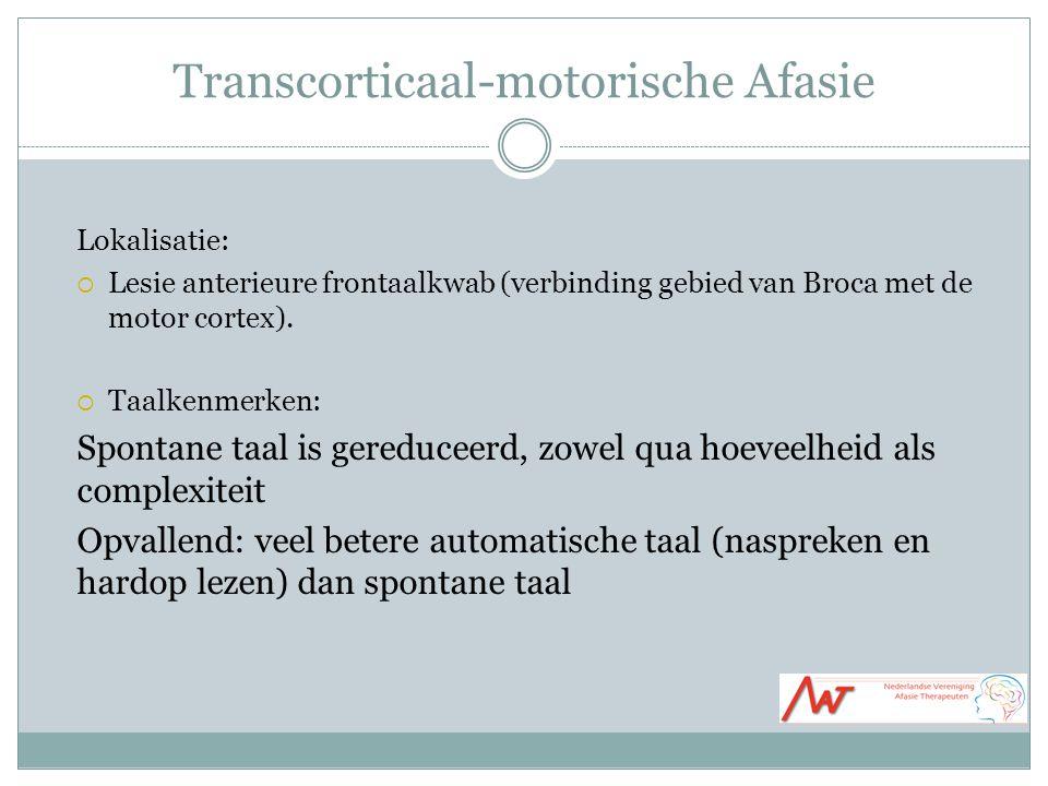 Transcorticaal-motorische Afasie