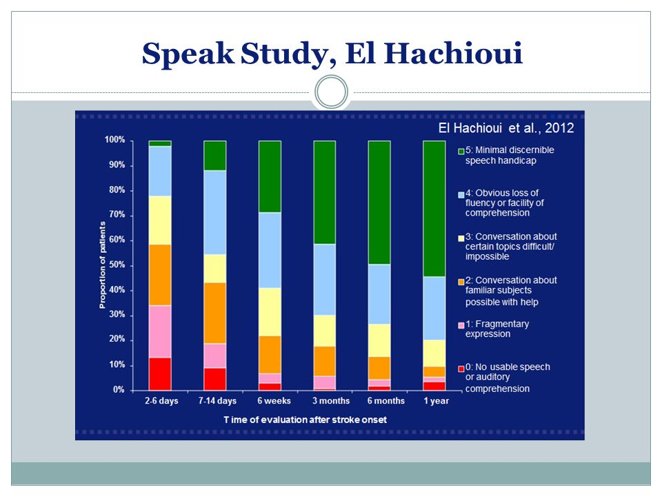 Speak Study, El Hachioui