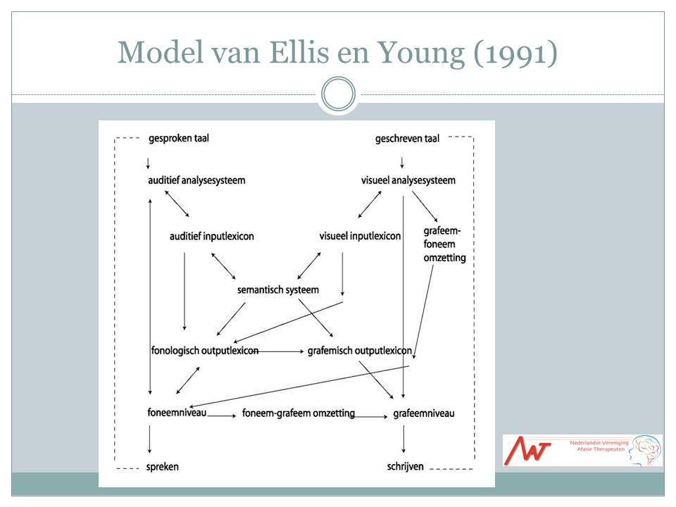 Model van Ellis en Young (1991)