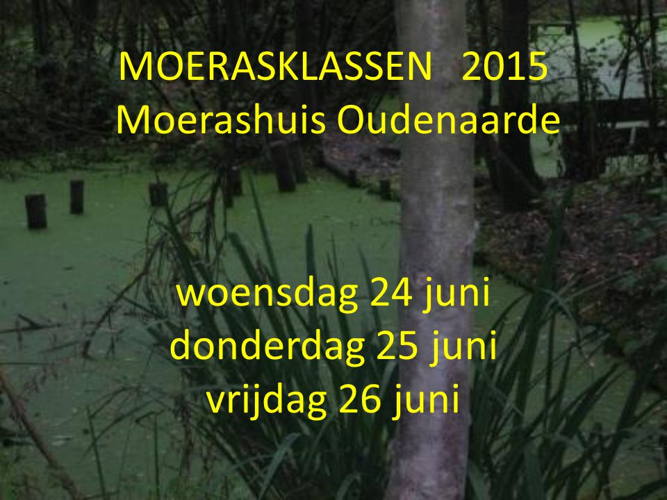 MOERASKLASSEN 2015 Moerashuis Oudenaarde
