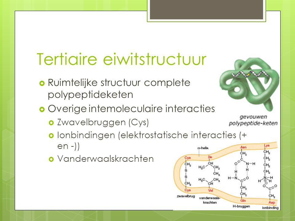 Tertiaire eiwitstructuur