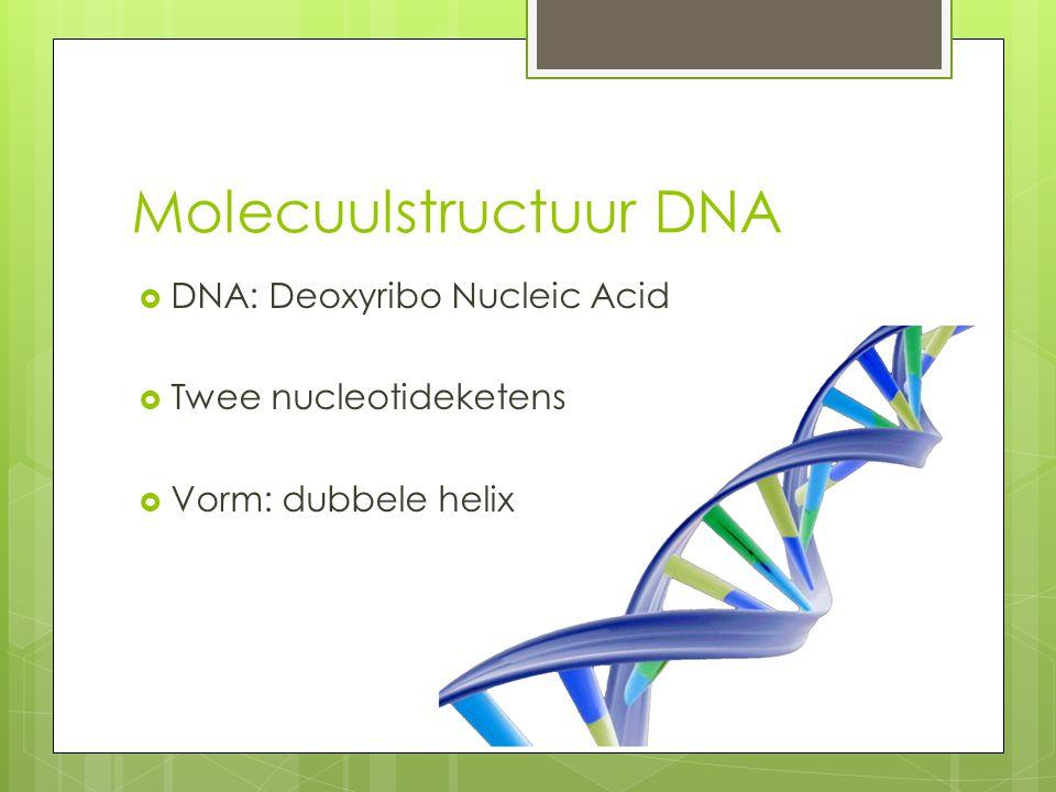 Molecuulstructuur DNA