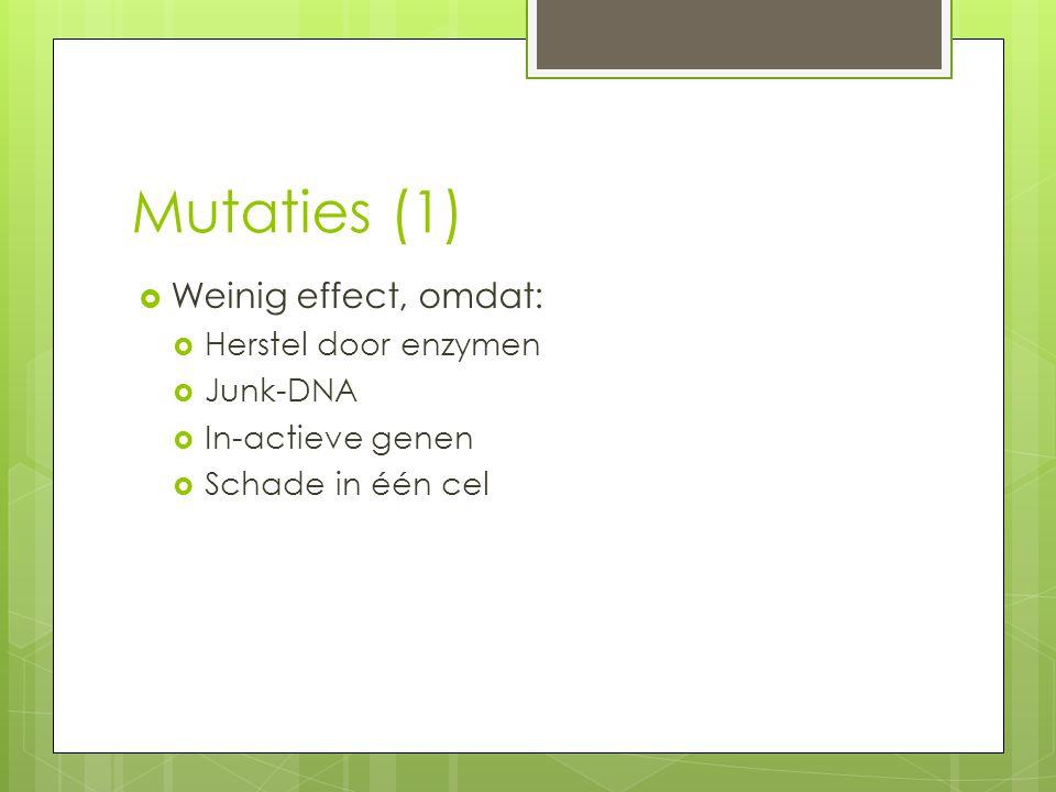Mutaties (1) Weinig effect, omdat: Herstel door enzymen Junk-DNA