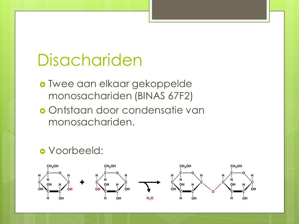 Disachariden Twee aan elkaar gekoppelde monosachariden (BINAS 67F2)