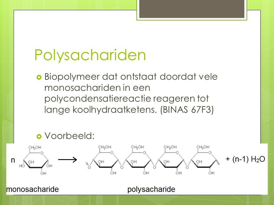 Polysachariden Biopolymeer dat ontstaat doordat vele monosachariden in een polycondensatiereactie reageren tot lange koolhydraatketens. (BINAS 67F3)