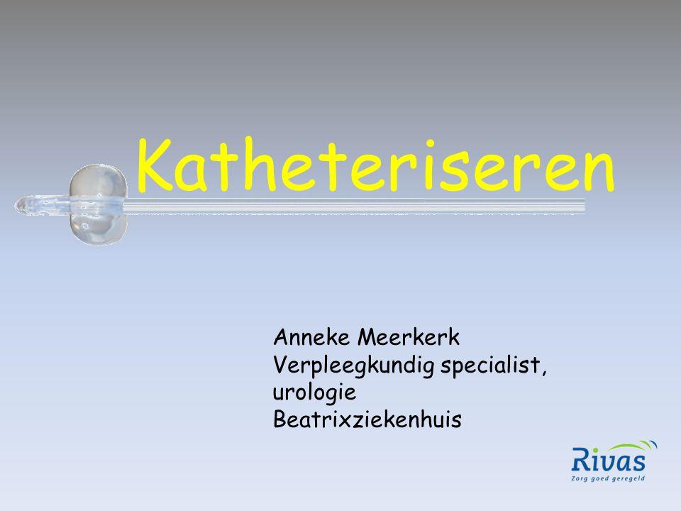 Katheteriseren Anneke Meerkerk Verpleegkundig specialist, urologie