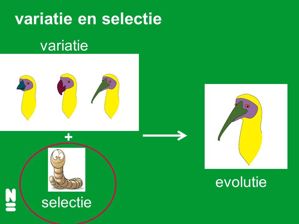 variatie en selectie variatie + evolutie selectie