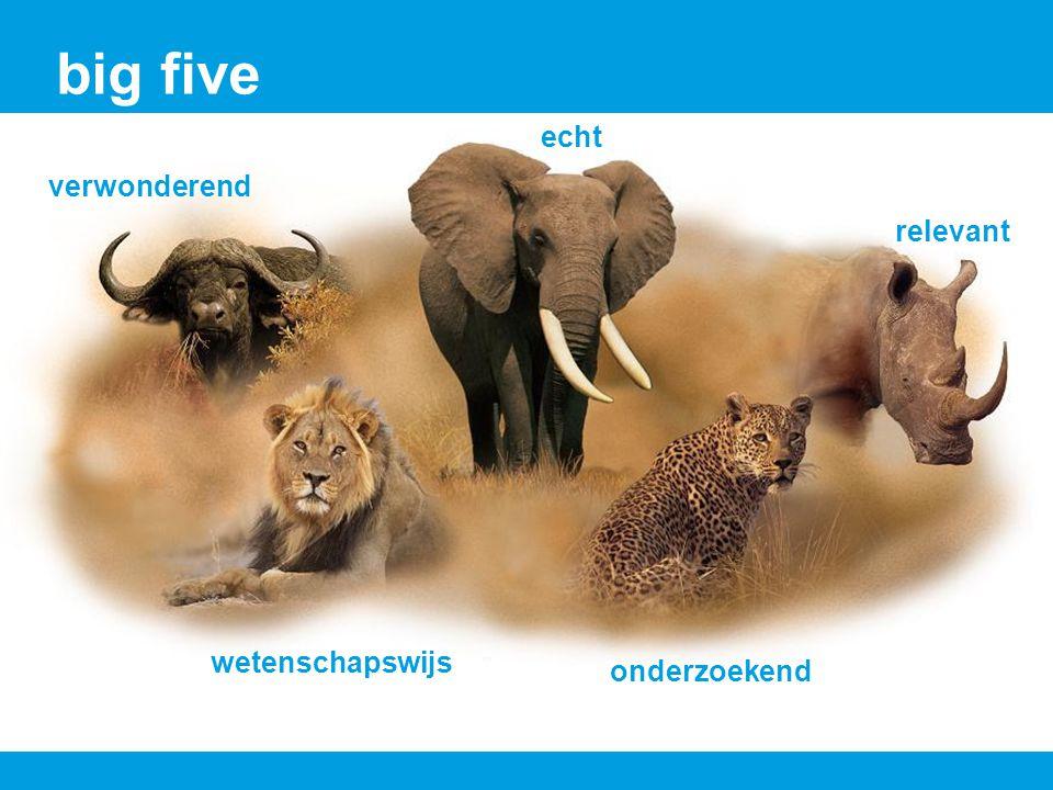 big five echt verwonderend relevant wetenschapswijs onderzoekend