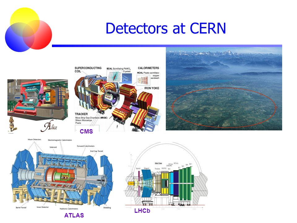 Detectors at CERN CMS LHCb ATLAS