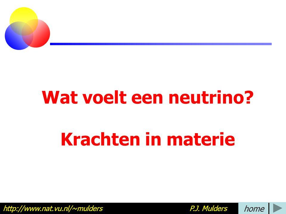 Wat voelt een neutrino Krachten in materie