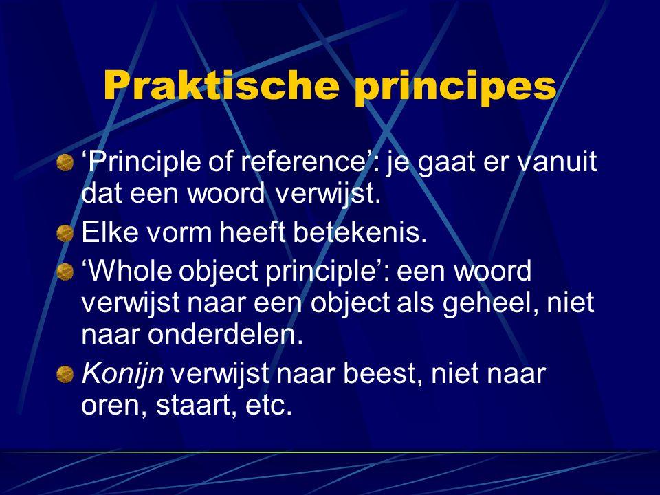 Praktische principes 'Principle of reference': je gaat er vanuit dat een woord verwijst. Elke vorm heeft betekenis.