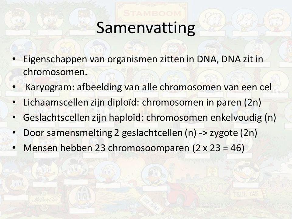 Samenvatting Eigenschappen van organismen zitten in DNA, DNA zit in chromosomen. Karyogram: afbeelding van alle chromosomen van een cel.