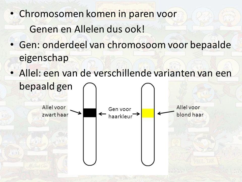 Chromosomen komen in paren voor Genen en Allelen dus ook!