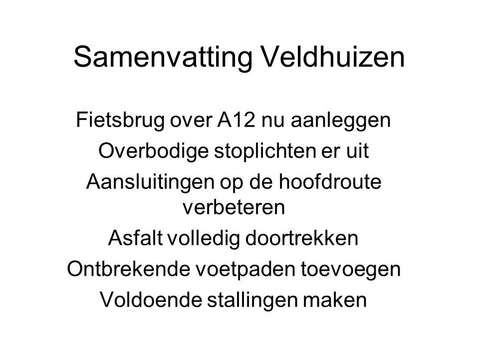 Samenvatting Veldhuizen