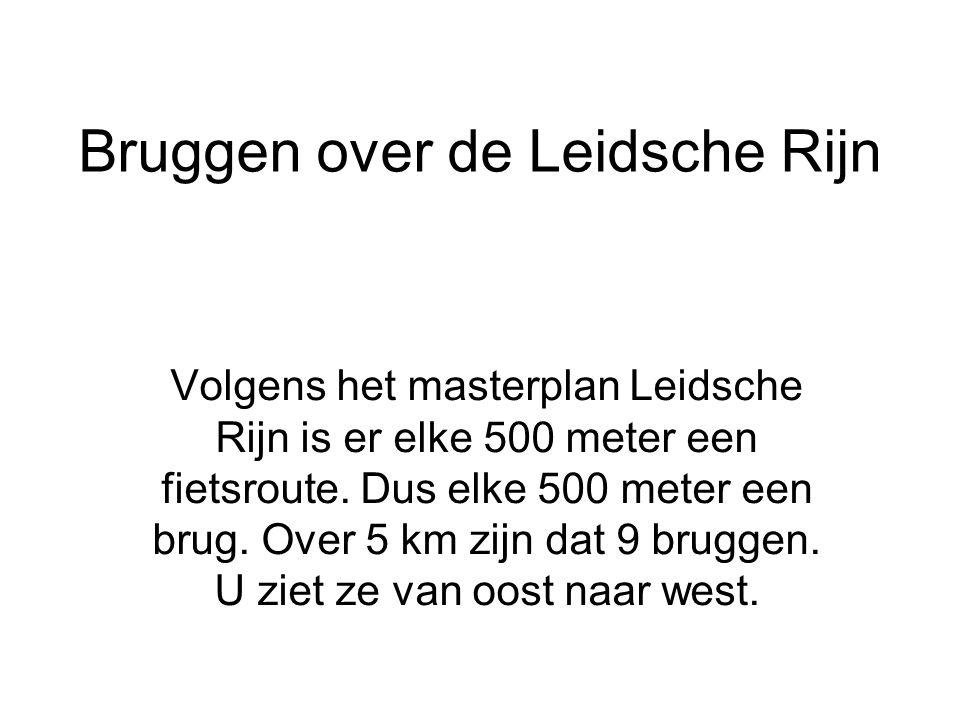 Bruggen over de Leidsche Rijn