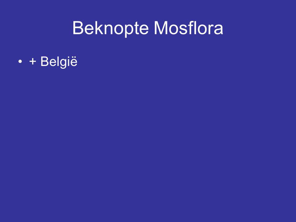 Beknopte Mosflora + België