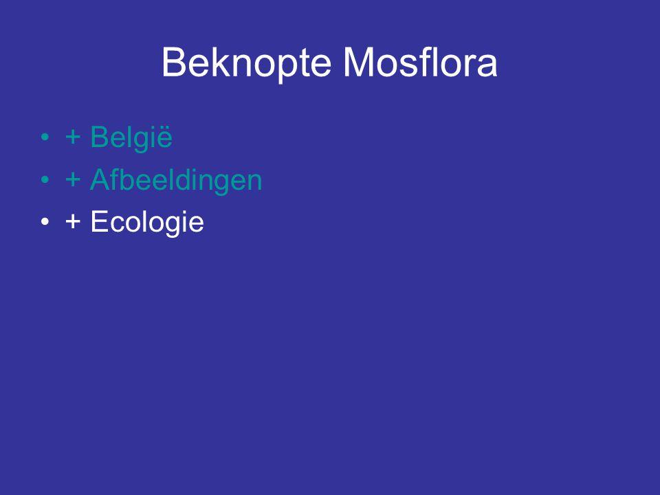Beknopte Mosflora + België + Afbeeldingen + Ecologie