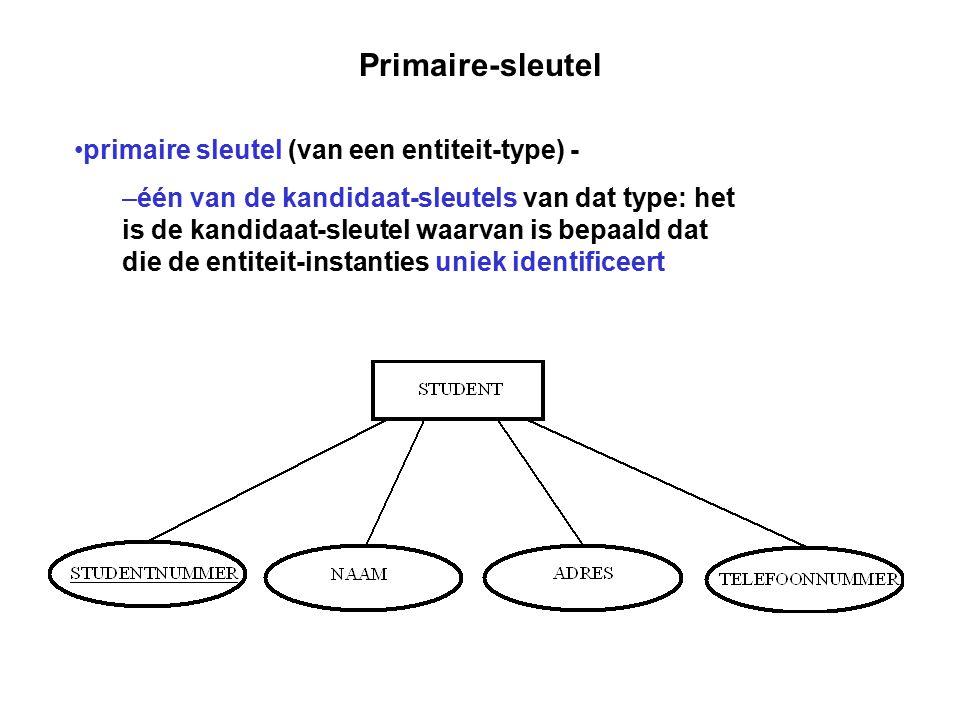 Primaire-sleutel primaire sleutel (van een entiteit-type) -