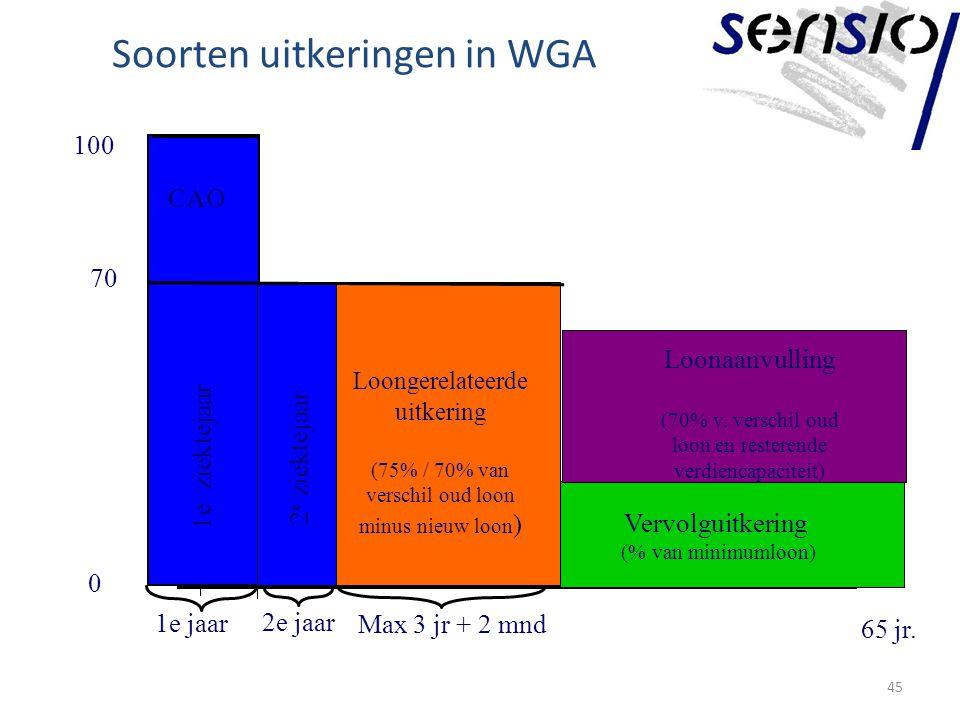 Soorten uitkeringen in WGA