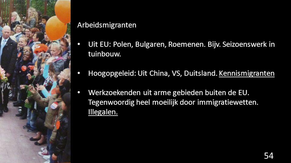 Arbeidsmigranten Uit EU: Polen, Bulgaren, Roemenen. Bijv. Seizoenswerk in tuinbouw. Hoogopgeleid: Uit China, VS, Duitsland. Kennismigranten.