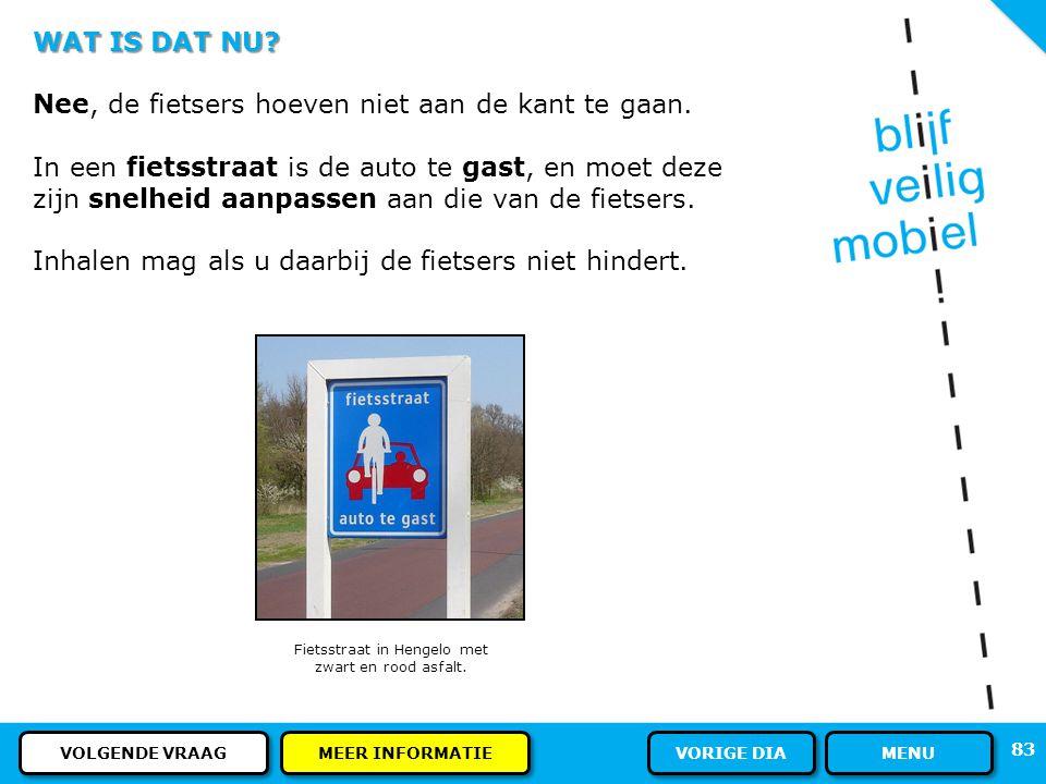 Fietsstraat in Hengelo met