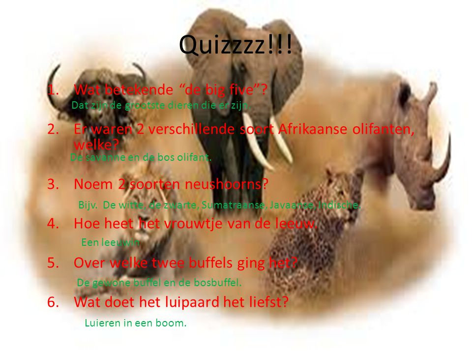 Quizzzz!!! Wat betekende de big five