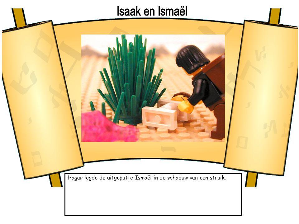 Isaak en Ismaël Hagar legde de uitgeputte Ismaël in de schaduw van een struik.