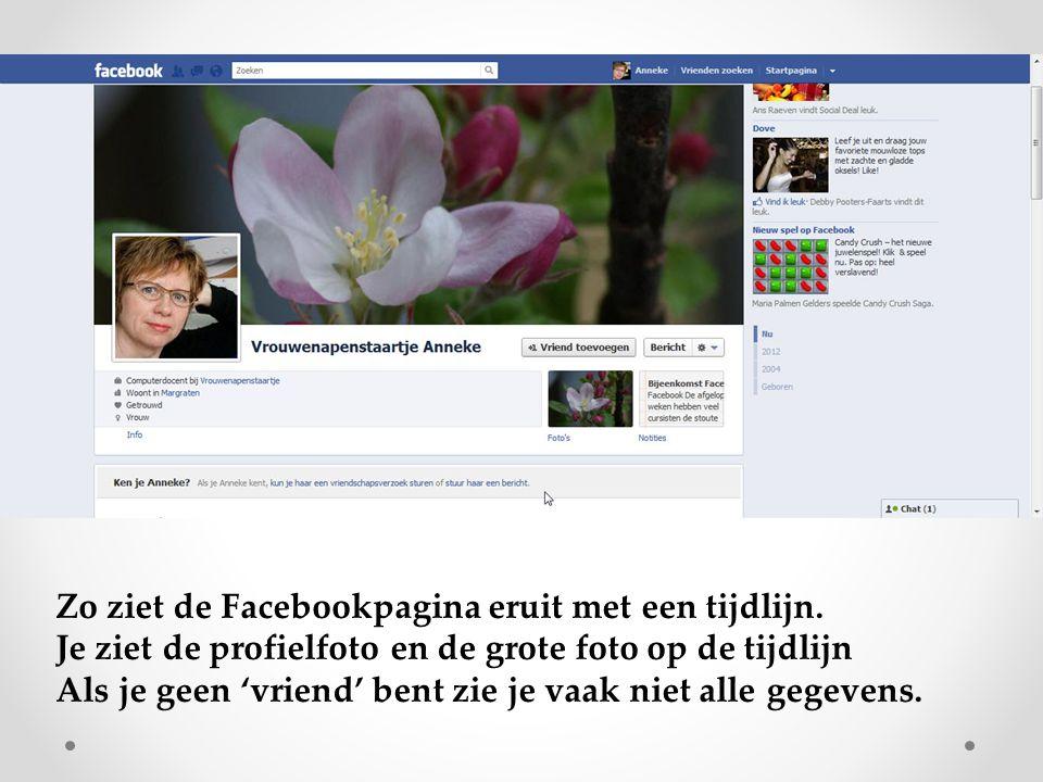 Zo ziet de Facebookpagina eruit met een tijdlijn.