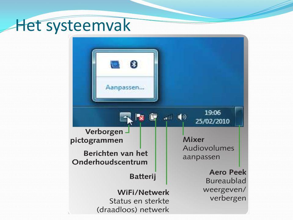 Het systeemvak