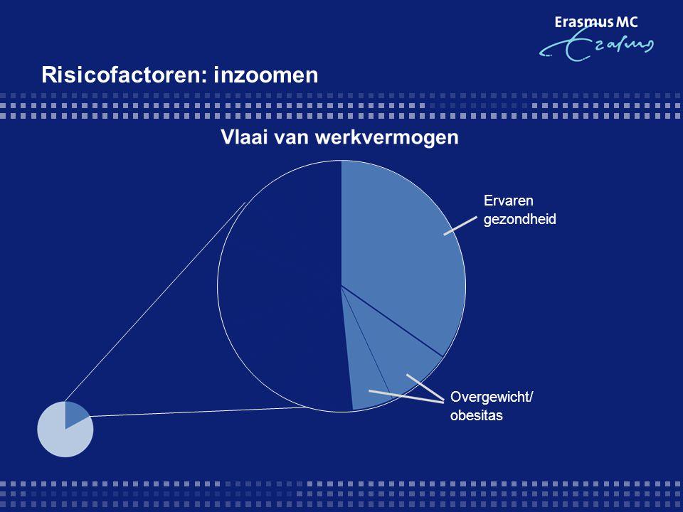 Risicofactoren: inzoomen