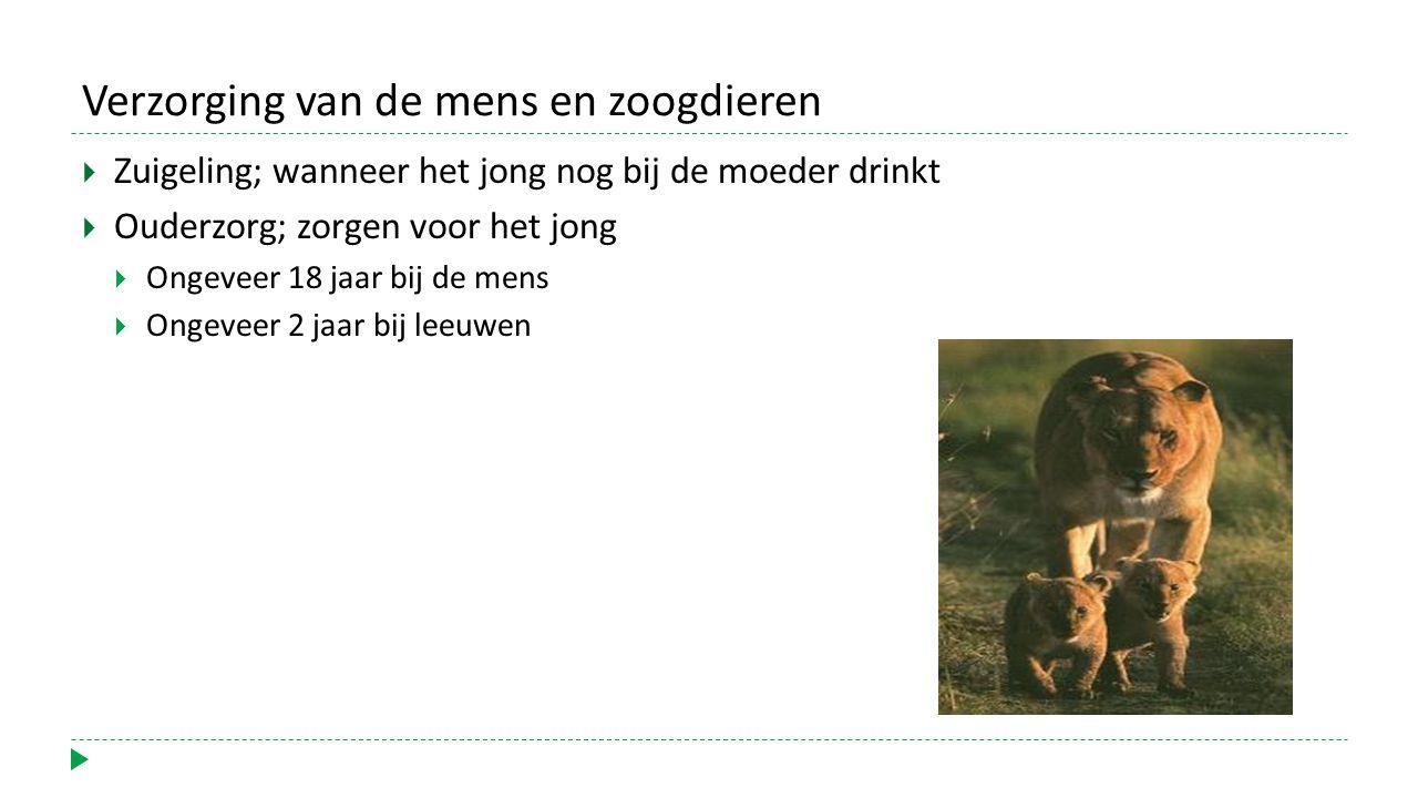 Verzorging van de mens en zoogdieren