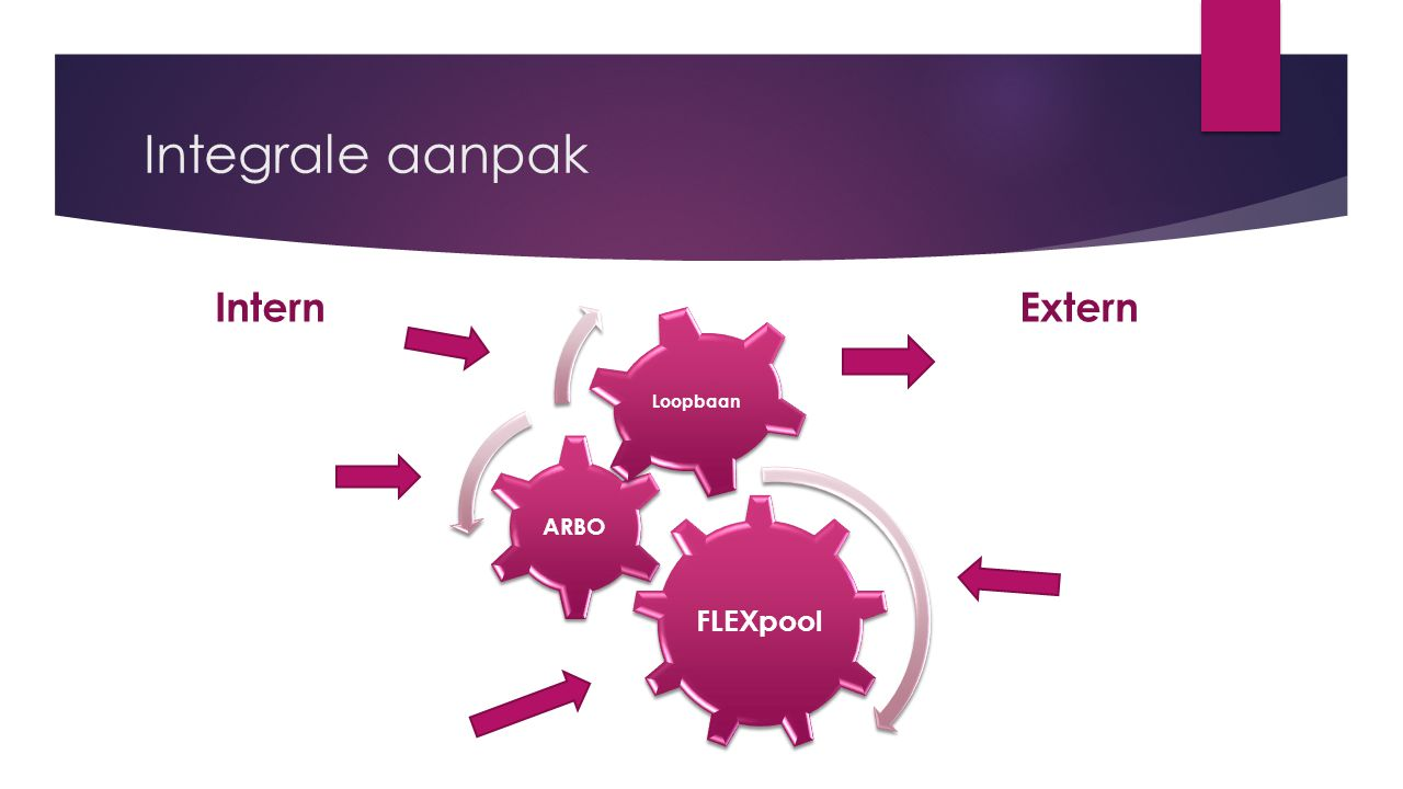 Integrale aanpak Intern FLEXpool ARBO Loopbaan Extern