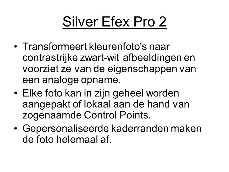 Silver Efex Pro 2 Transformeert kleurenfoto s naar contrastrijke zwart-wit afbeeldingen en voorziet ze van de eigenschappen van een analoge opname.